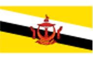 【去文莱的签证要怎么办】文莱旅游签证需要什么资料